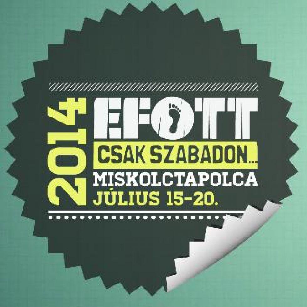 koncert-20131211-8181-efott2014-jpg